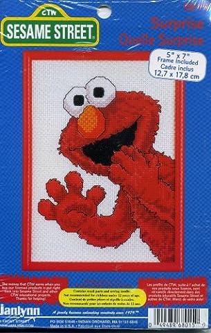 Sesame Street Surprise (Sesame Street Cross Stitch)