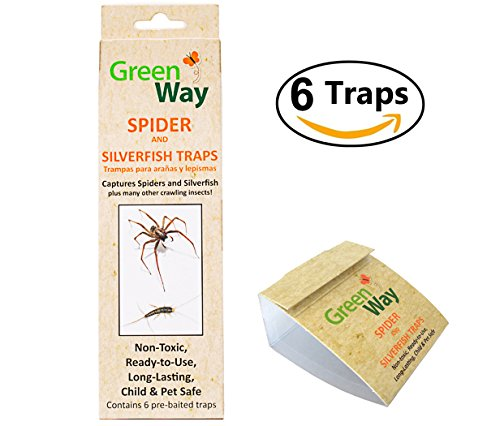 GreenWay Spider & Silverfish Trap - 6 prebaited traps | Ready To Use Heavy Duty Glue, Safe, Non-Toxic with No Insecticides or Odor, Eco Friendly, Kid and Pet Safe Baited Glue Traps