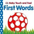 Baby Touch and Feel: First Words