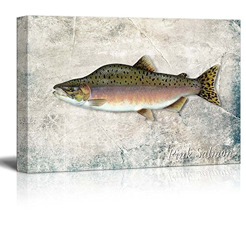 Wall26 - Green Pink Salmon Fish Illustration on a Textured Background - Canvas Art Home Decor - 12x18 inches Salmon Fish Wall