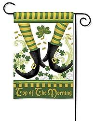 BreezeArt Irish Jig Garden Flag #32013