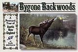 Bygone Backwoods, Earl Brechlin, 0892726369