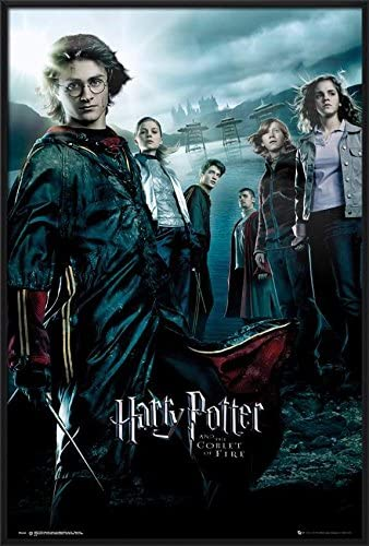 Amazon.com: Harry Potter and The Goblet of Fire - Framed Movie ...