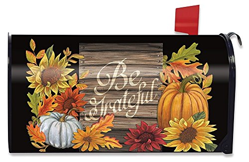 (Briarwood Lane Be Grateful Autumn Magnetic Mailbox Cover Thanksgiving Floral Fall Standard)
