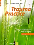 Trauma Practice : Tools for Stabilization and Recovery