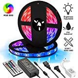 UPGRADED Dimmable LED Strip Lights Kit,32.8ft 300 LEDs SMD 5050 LED Tape Lights,2-Pack x 5M w/Extra Adhesive 3M Tape, 44 Key Remote Controller,Flexible Changing Multi-Color for Bar Home Decoration