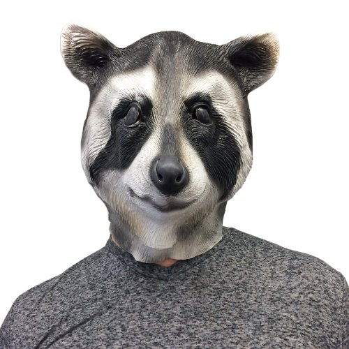 Off the Wall Toys Cool Raccoon Halloween Face Mask]()