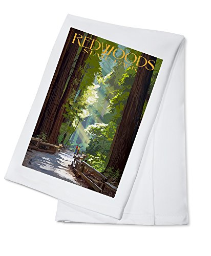 Redwoods Park, California - Pathway in Trees (100% Cotton Kitchen Towel)