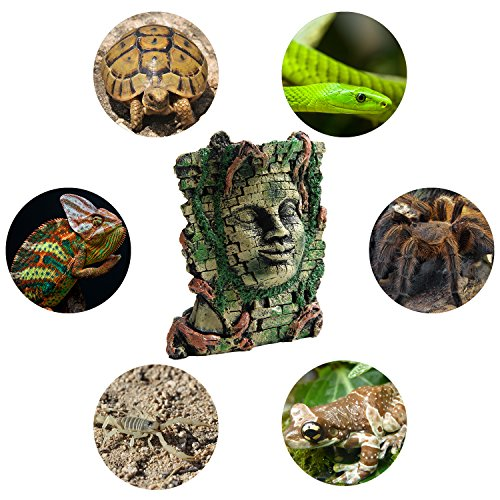 MEWTOGO Medium Size 7.3 by 6.7 by 4.1 inches Reptile and Amphibians Habitat Dcor Cave Hide out - Perfect Aquarium Fish Tank Decoration - Maya