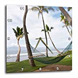 3dRose dpp_89190_3 Hammock Under Hawaiian Palm Trees, Maui, Hawaii US10 JGS0039 Jim Goldstein Wall Clock, 15 by 15-Inch