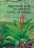 img - for The Ferns & Lycophytes of Texas book / textbook / text book