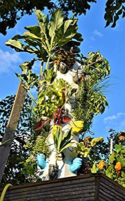 i3-MAX VX jardín Vertical: Amazon.es: Jardín