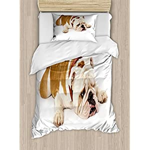 Ambesonne English Bulldog Duvet Cover Set, Sad and Tired Bulldog Laying Down European Pure Breed Animal Photography, Decorative 2 Piece Bedding Set with 1 Pillow Sham, Twin Size, Brown Cream 13