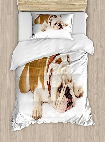 Ambesonne English Bulldog Duvet Cover Set, Sad and Tired Bulldog Laying Down European Pure Breed Animal Photography, Decorative 2 Piece Bedding Set with 1 Pillow Sham, Twin Size, Brown Cream 1