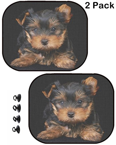 Terrier Womens Light - MSD Car Sun Shade Protector Block Damaging UV Rays Sunlight Heat for All Vehicles, 2 Pack Image 26594170 Puppy of The Yorkshire Terrier on The Black Background