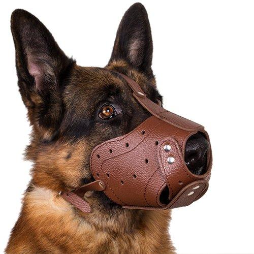 CollarDirect German Shepherd Oversize Leather Dog Muzzle Black Brown Extra Large (Black) by CollarDirect