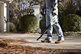 Scotts S20410 SYNC Lithium-Ion Cordless Blower/Sweeper, 20-volt