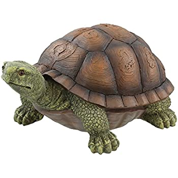 Large Box Turtle Garden Decoration Collectible Tortoise Terrapin Figurine  Statue