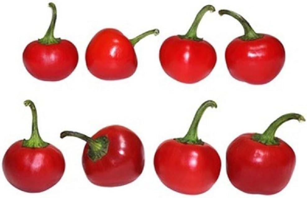 Original Carolina Reaper Chilli Pepper Seeds X 50 Super Hot 100/% GENUINE