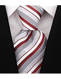 Striped Ties for Men - Woven Necktie - Mens Ties Neck Tie by Scott Allan