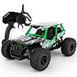 Remote Control Car Soni RC Cars 1/16 Scale Electric Remote Control Off Road Monster RC Truck 2.4GHz 2WD High Speed Radio Control Car-Best Toys for Kids and Adult (Green)