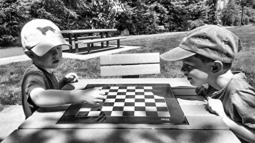 Home Comforts Peel-n-Stick Poster of Checkers Sunny Boys Park Summer Seattle Chess Vivid Imagery Poster 24 x 16 Adhesive Sticker Poster Print