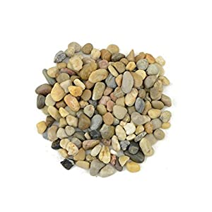 "CNZ Decorative Ornamental River Pebbles Rocks for Fresh Water Fish Animal Plant Aquariums, Landscaping, Home Decor etc, Mixed Color, 5lbs, 0.5""-0.8"" 40"