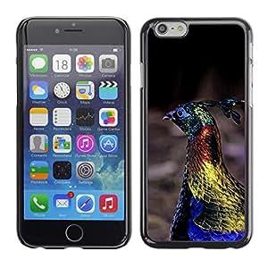 Pavo real del pájaro azul vibrante primavera Oro- Metal de aluminio y de plástico duro Caja del teléfono - Negro - Apple (5.5 inches!!!) iPhone 6+ Plus / 6S+ Plus