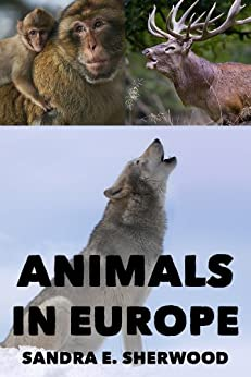 Animals In Europe - Enjoy And Learn About Your World (Kids