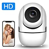 Indoor Surveillance WiFi Camera, Dora Wireless Baby/Pet Monitor with HD Audio Camera Motion Tracking Detector Night Vision Remote Control via APP