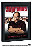 Sopranos, The: Season 1