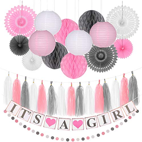 Pink Baby Shower Decorations for Girls - It's A Girl Party Banner, Paper Honeycomb Balls, Lanterns, Paper Circle Garland, Tassels and Fans - Baby Girl Shower Themed Complete Party Kit ()