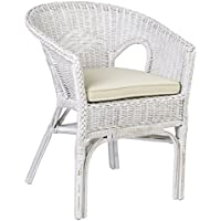 East at Main Felton White Rattan Square Accent Chair, (23 L x 24 W x 31 H)