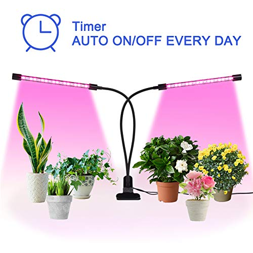 Greensen Led Grow Light for Indoor Plants Two Way Timer Auto ON Off Every Day Plant Grow Lamp 24W 36 LED 3/9/12H Timer 5 Dimmable Levels Adjustable Gooseneck for Seedling Growing Blooming Fruiting