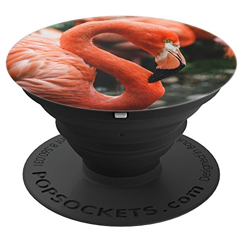 Flamingo Coral Peach Orange - PopSockets Grip and Stand for Phones and Tablets (Flamingo Coral)