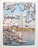 Washington DC Monument Fridge Magnet