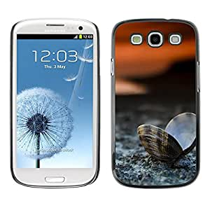 All Phone Most Case / Oferta Especial Duro Teléfono Inteligente PC Cáscara Funda Cubierta de proteccion Caso / Hard Case Samsung Galaxy S3 // Clam Seashell Beach