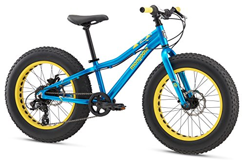 "Mongoose Boys Argus Fat Tire Bicycle 20"" Wheel, Teal"