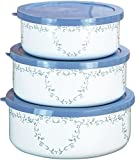 Corelle Coordinates by Reston Lloyd 6-Piece Enamel on Steel Bowl/Storage Set, Country Cottage