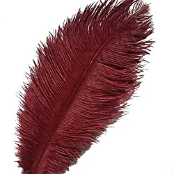 Sowder 10pcs Ostrich Feathers 12-14inch(30-35cm) Plume Home Wedding Decoration(burgundy)