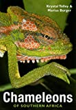 Chameleons of Southern Africa, Krystal Tolley and Marius Burger, 1770073752