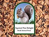 Volkman Seed Small Animal Squirrel Delight All Nut