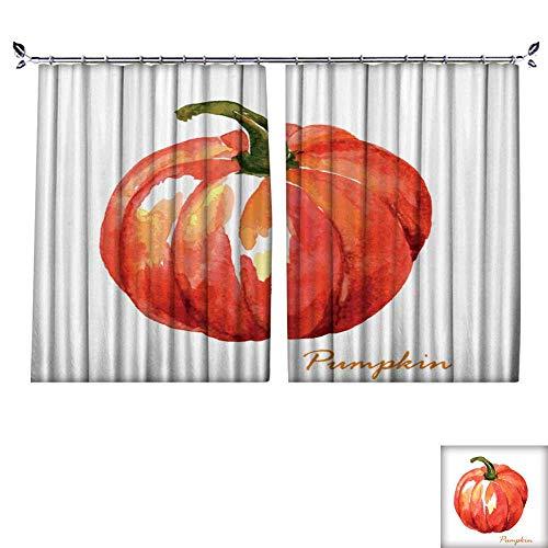 DragonBuildingMaterials Patterned Drape for Glass Door Hand Painted Watercolor Pumpkin W63 x -