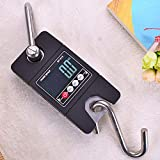Scale Hylotele Creative Electronic Portable Hanging Mini Size 300KG Industrial Crane Handle Digital LCD Weight Hook Scale