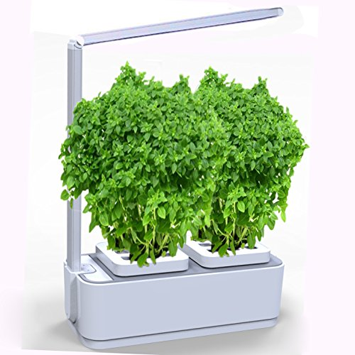 Soil Free Smart Herb Garden Hydroponics Indoor Plant Growth LED Light Kit Mini Garden Self-Watering Pots, Seeds Planting & Intelligent Desk Reading Lamp for Friends, Kids and Families- White by MAGICYOYO