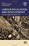 img - for Labour Regulation and Development: Socio-Legal Perspectives book / textbook / text book