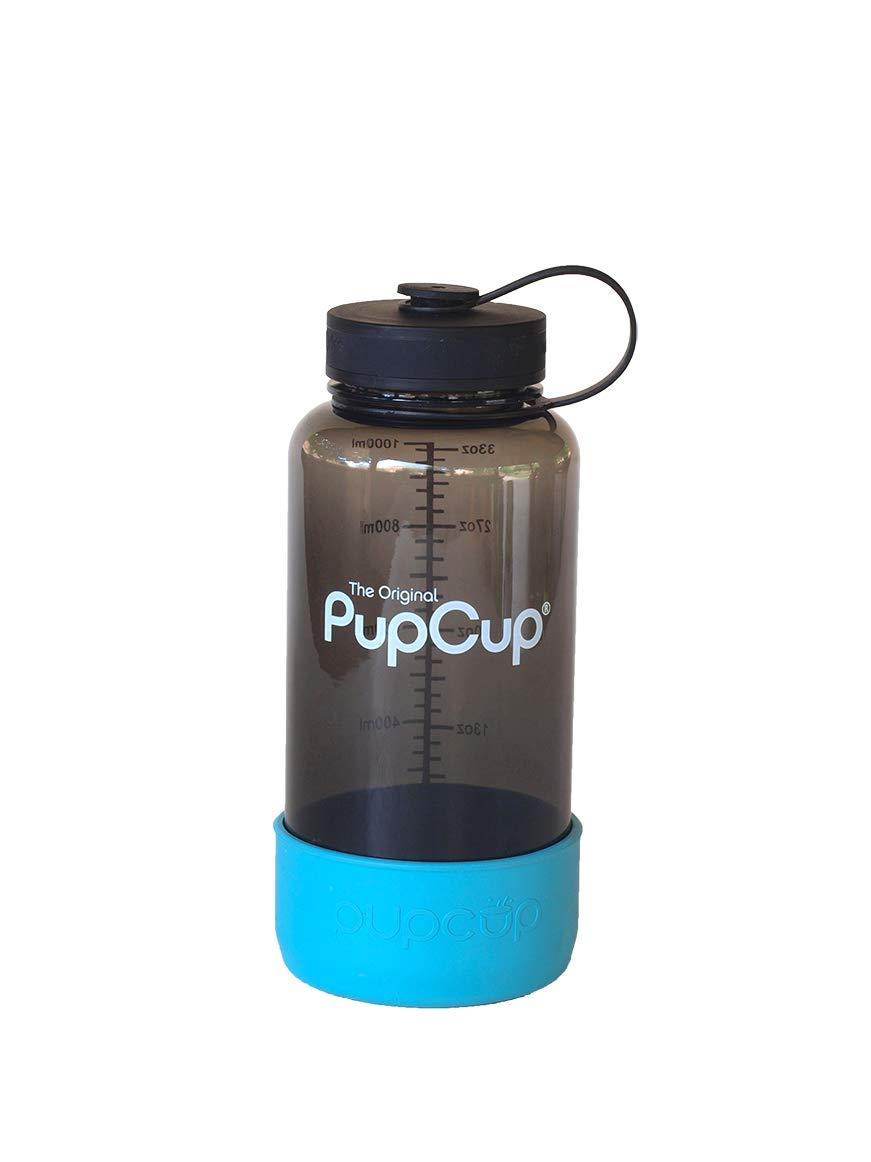 PupWerks the Original Pup Cup Kit, Blue
