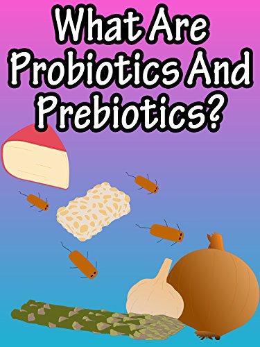 What Are Probiotics And Prebiotics? (Highest Rated Probiotics)