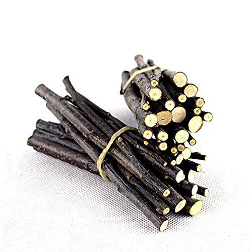 hwangli Wood Chew Stick Twig for Small Pet Rabbit Rat Hamster Chinchilla Dental Care Toy