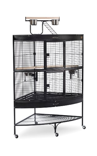 (Prevue Pet Products Large Corner Bird Cage 3158BLK Black 45-Inch by 30-Inch by 69-Inch)